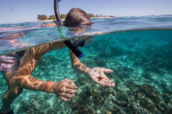 snokel namotu island reef