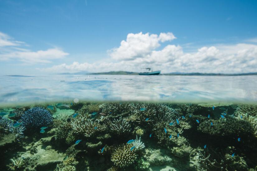 namotu coral reef sustainable eco surf resort